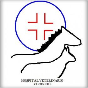 hospitalveterinarioV.jpg