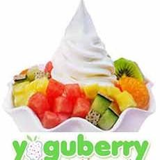Yoguberry-Tepic.jpg